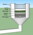filter-mikroalga-solusi-tepat-penanganan-limbah-logam-berat